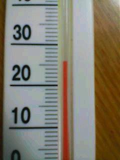 気温=26度