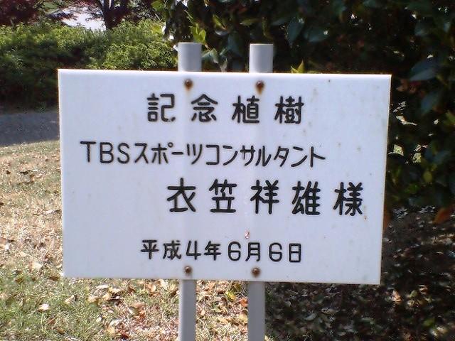 記念樹_衣笠氏