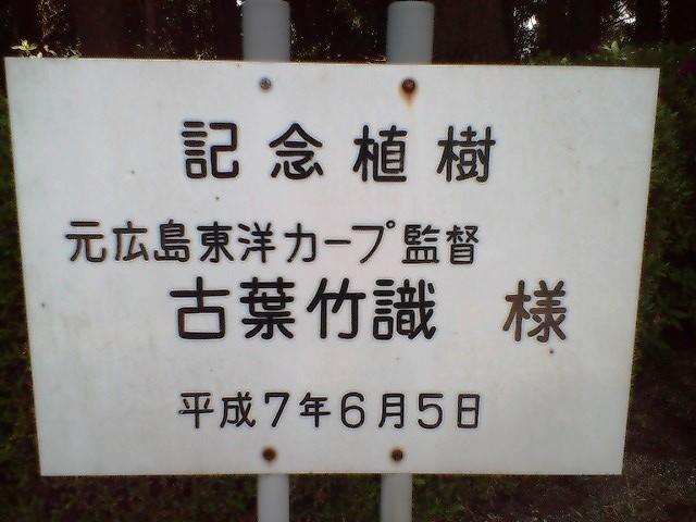 記念樹_古葉元監督